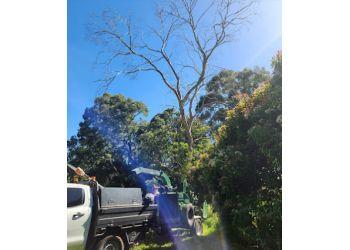 Adam's Tree Services