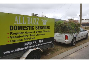 All Buzz Cleaning