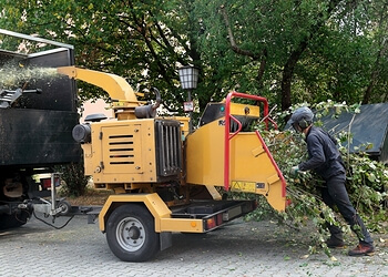 Andrew Davidson Tree Pruning and Chipping