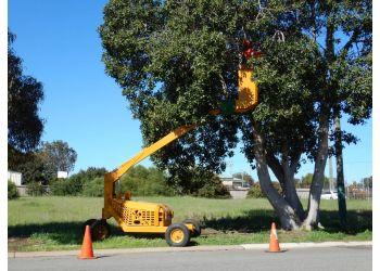 Aussie Tree Services