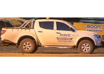 Ausvic Painting Pty Ltd
