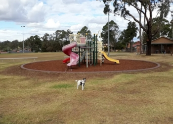 Bathurst Street Park