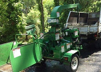 Bendigo Stump Grinding & Tree Service