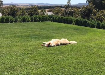 Biajag Constructions
