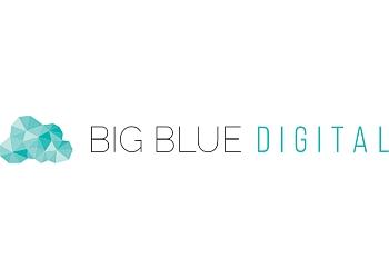 Big Blue Digital