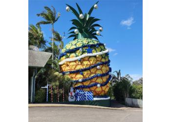Big Pineapple