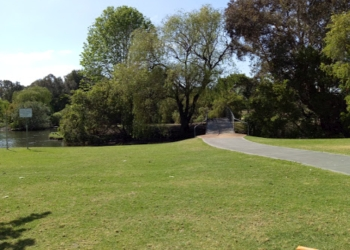 Bomaderry Creek Walking Track