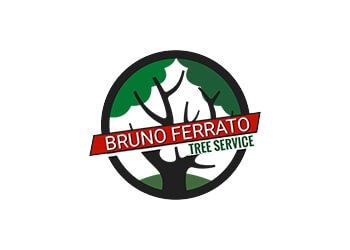 Bruno Ferrato Tree Services