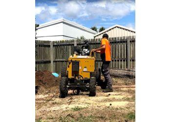 3 Best Tree Services In Bundaberg Qld Expert