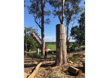 C & S Tree Services