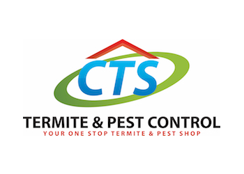 Complete Termite Solutions