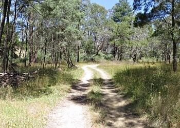 Creswick Regional Park Trail