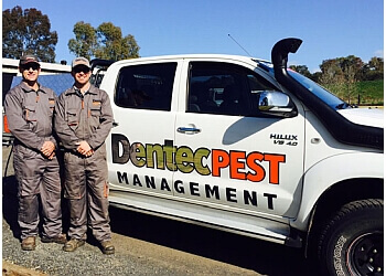Dentec Pest Management