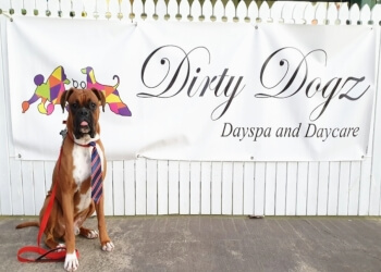 Dirty Dogz Dayspa & Daycare