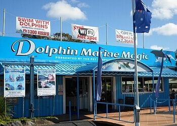 Dolphin Marine Magic