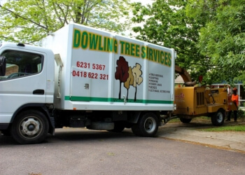 Dowling Tree Services
