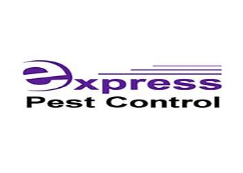 Express Pest Control Hobart