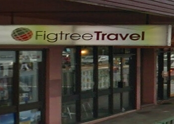 Figtree Travel