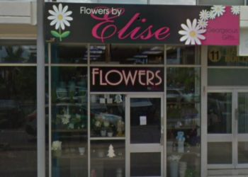 Flowers by Elise