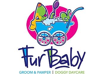 FurBaby Groom & Pamper | Dog Daycare