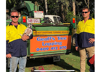 3 Best Tree Services In Hervey Bay Qld Expert