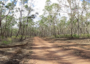 Greater Bendigo National Park Trail