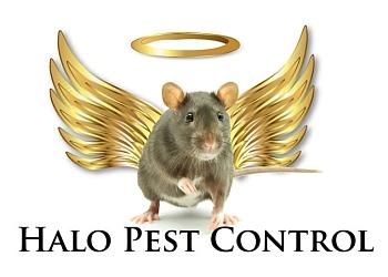Halo Pest Control