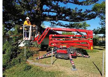 Harry Walker Tree Services