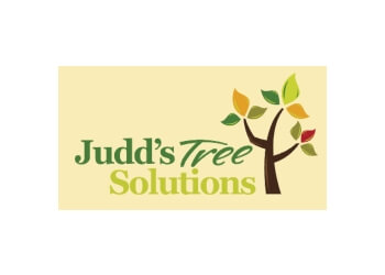 Judd's Tree Solutions