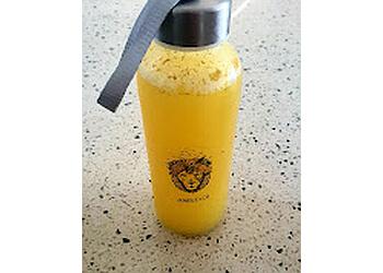 Jungle & Co