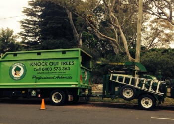 Knock Out Trees