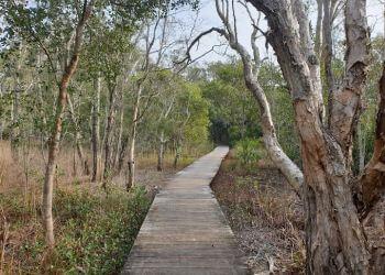 Kooloonbung Creek Nature Reserve