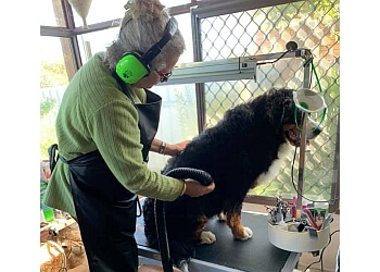 L.A. Clips Dog Grooming