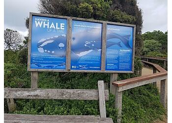 Logans Beach Whale Watching Platform