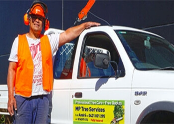 MP Tree Services Canberra