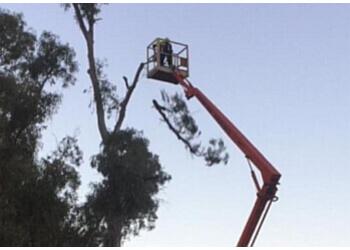 Mildura Tree Services