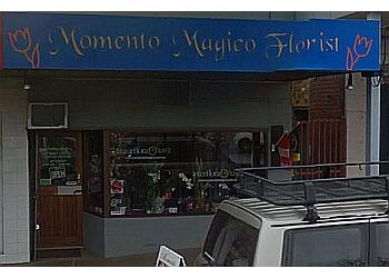 Momento Magico Flowers