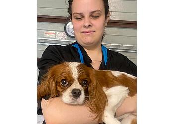 Moulin Pooch Grooming Lounge