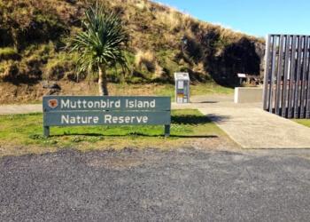 Muttonbird Island Nature Reserve
