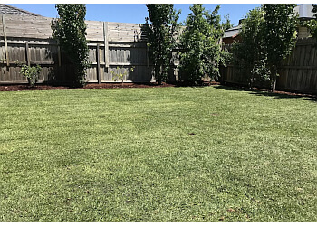 3 Best Landscaping Companies In Geelong Vic Expert Recommendations
