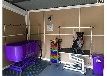 Nails & Tails Dog Grooming