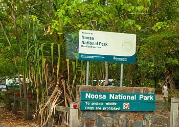 Noosa National Park Trail