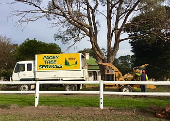 Pacey Tree Service