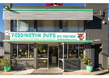 Paddington Pups