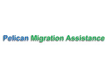 Pelican Migration Assistance