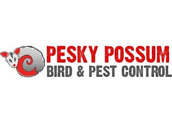 Pesky Possum Bird and Pest Control