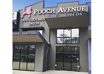Pooch Avenue