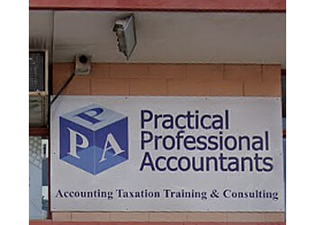 Practical Professional Accountants