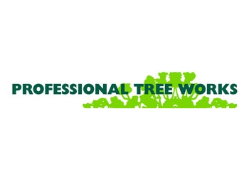 Professional Tree Works Pty Ltd