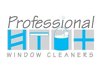 Professional Window Cleaners